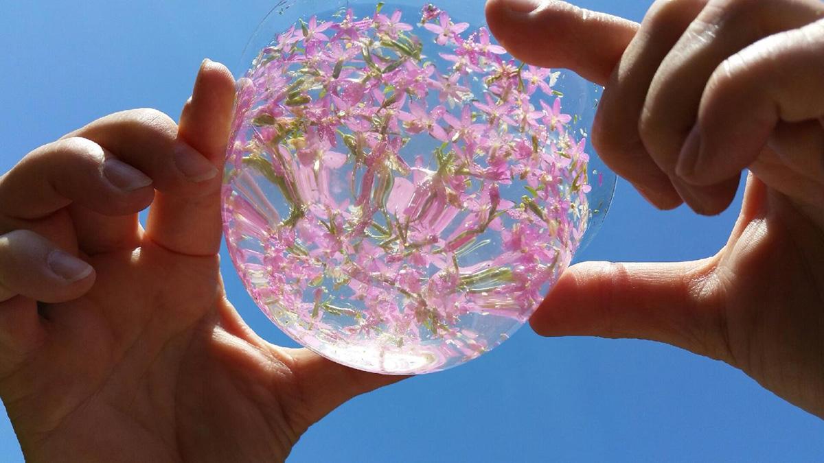 sylvie-bonnaud-fleurs-de-bach-perreux-sur-marne-94